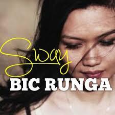 Bic Runga 1