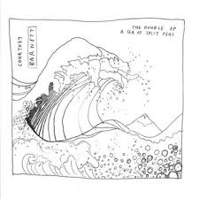 courtney barnett4