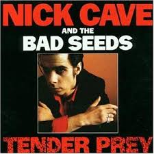 nick cave 28