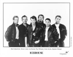 icehouse10