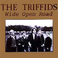 triffids3