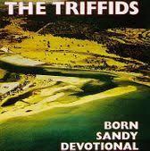triffids4