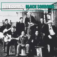 black sorrows2