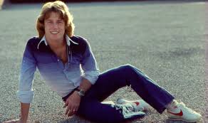 andy gibb14