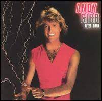 andy gibb24